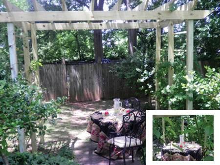12 Free Diy Arbor Plans To Build Garden Arbors Freeww Com