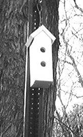 Tall Birdhouse