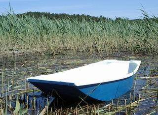 Boat Plans To Build Sailboats Pontoons Canoe Plans