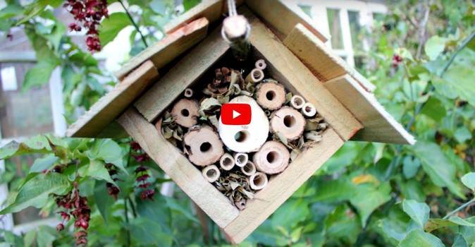 Suspended Insect House