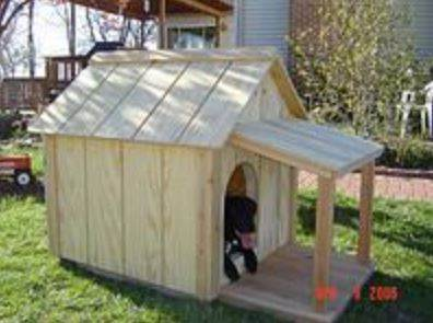 An Insulated Dog House