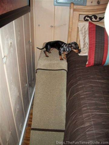 Build a Dog Ramp - 50 Dog Ramps and Pet Step Plans