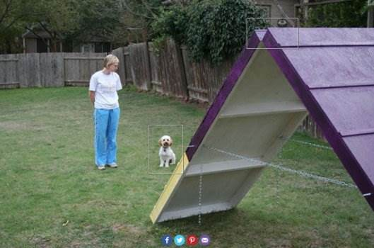 A-Frame Ramp for Dogs