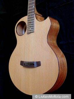 Ipomoea Acoustic Guitar