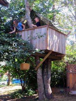 Tree Fort Plan